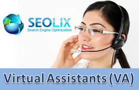 SEOLIX Virtual Assistant