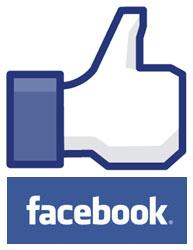 SEOLIX Facebook Likes