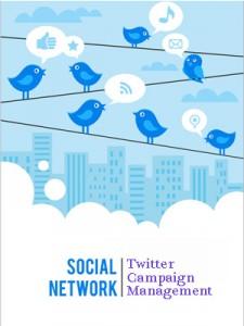 SEOLIX Twitter Campaign Management